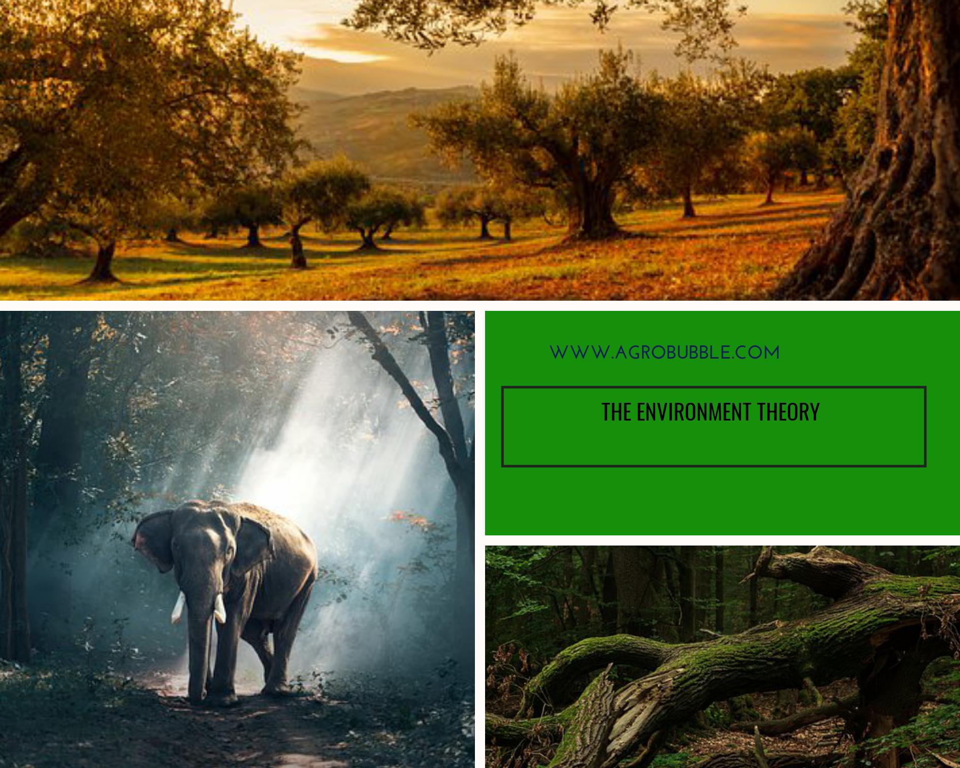 Environment - Agrobubble